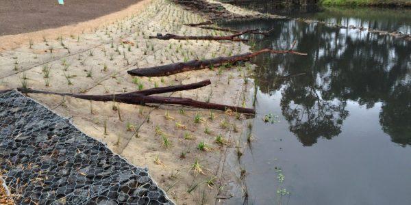 Latrobe Stormwater Harvesting